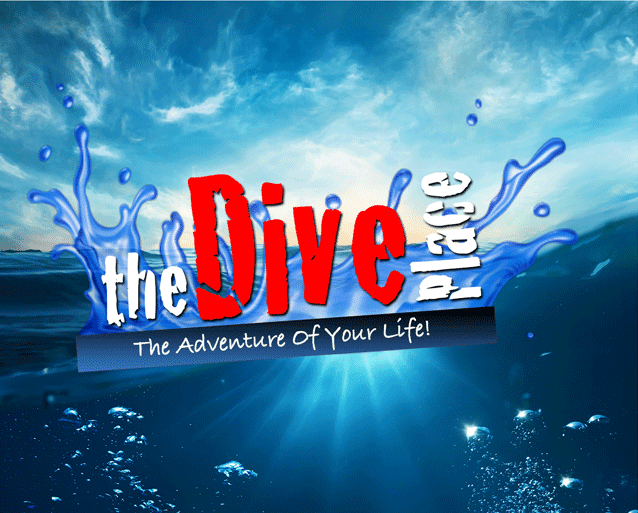 The Dive Place - point of interest  | Photo 10 of 10 | Address: 15502 Stoneybrook W Pkwy #128, Winter Garden, FL 34787, USA | Phone: (407) 517-4737