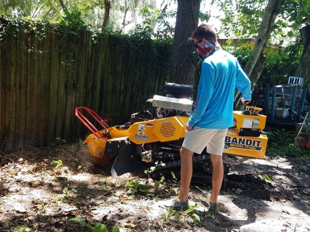 Southern Stump Removal, LLC - point of interest  | Photo 1 of 10 | Address: 1585 Waterwitch Dr, Orlando, FL 32806, USA | Phone: (407) 883-6197