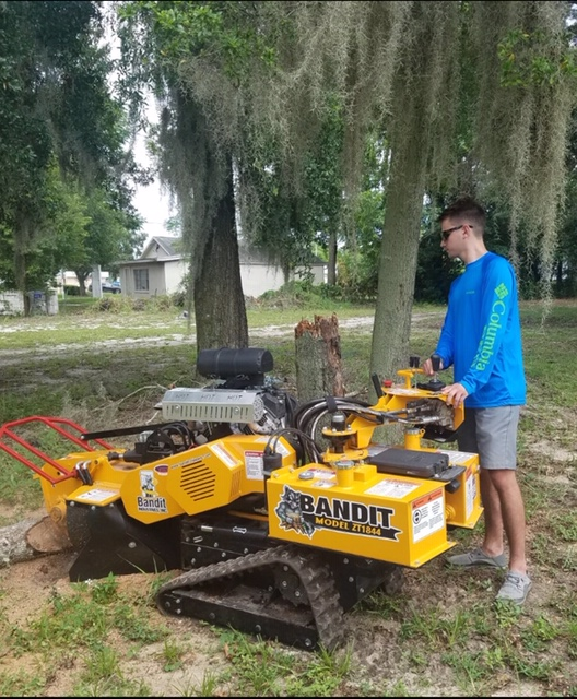 Southern Stump Removal, LLC - point of interest  | Photo 5 of 10 | Address: 1585 Waterwitch Dr, Orlando, FL 32806, USA | Phone: (407) 883-6197