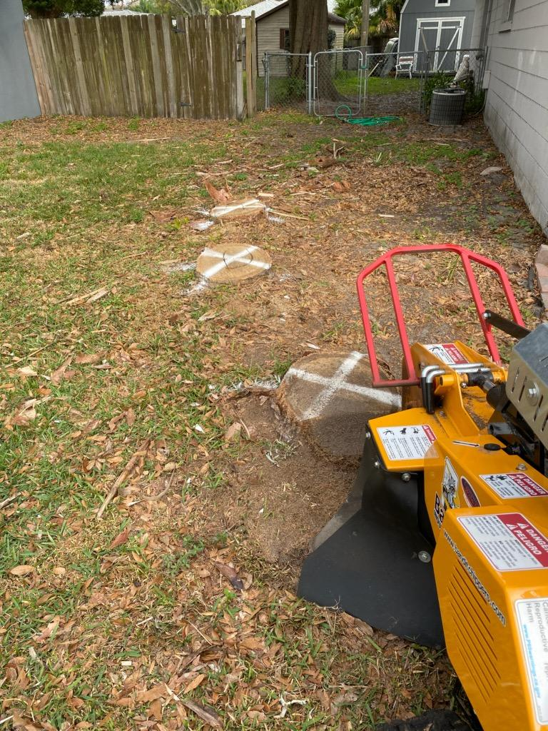 Southern Stump Removal, LLC - point of interest  | Photo 7 of 10 | Address: 1585 Waterwitch Dr, Orlando, FL 32806, USA | Phone: (407) 883-6197