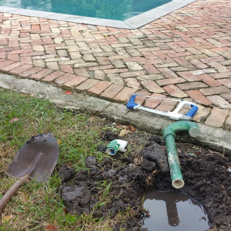 Professional Poolcare - general contractor    Photo 4 of 10   Address: 243 N Texas Ave, Orlando, FL 32805, USA   Phone: (407) 255-7665
