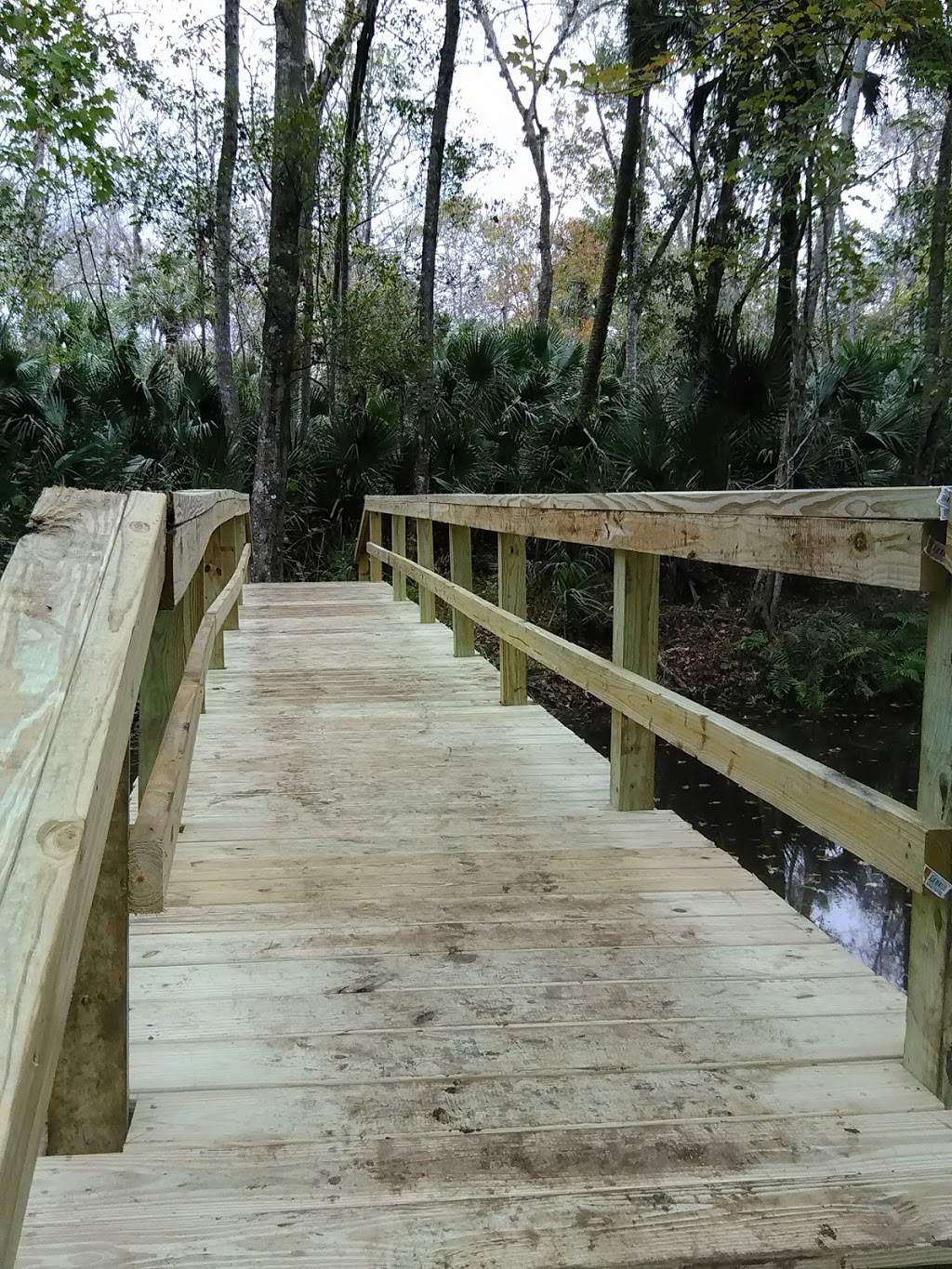 Affordable outdoor solutions LLC - general contractor    Photo 3 of 10   Address: 2600 Gowen St, Orlando, FL 32806, USA   Phone: (321) 287-7310