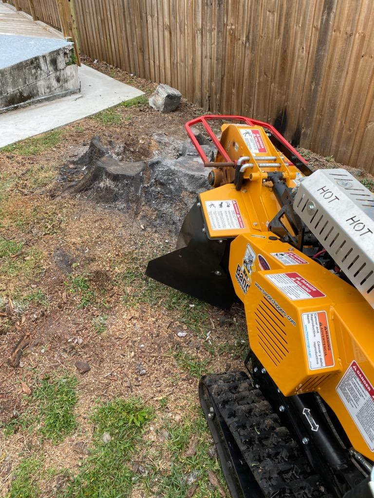 Southern Stump Removal, LLC - point of interest  | Photo 6 of 10 | Address: 1585 Waterwitch Dr, Orlando, FL 32806, USA | Phone: (407) 883-6197